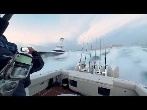 Fishing Tournament- Bluewater Movements Shotgun Start By AH360