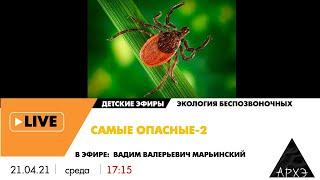 """Детский эфир """"Самые опасные-2"""" рубрики """"Экология беспозвоночных"""""""
