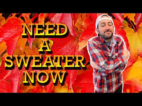 Need A Sweater Now | Young Jeffrey's Song of the Week