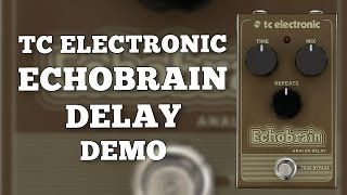 TC Electronic Echobrain Analog Delay Demo