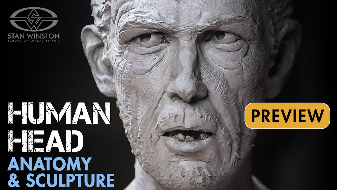 Human Head Anatomy and Sculpture - PREVIEW - YouTube