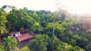 Big Tree Wildlife Refuge - Punta Uva (Puerto Viejo, Costa Rica)