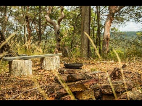 240 Watagan Road, Martinsville - 'Martinspur' Watagans Wilderness Retreat