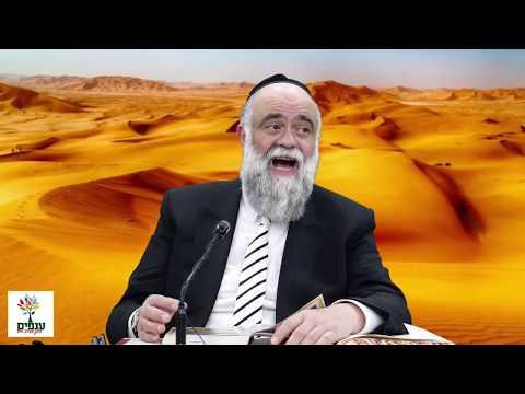 פרשת במדבר: סוד הדגלים - הרב משה פינטו - שידור חי HD