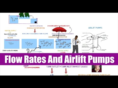 Flow Rates and Airlift Pumps | Ask The Aquaponics God