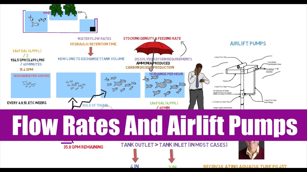 Flow Rates And Airlift Pumps Ask The Aquaponics God Youtube
