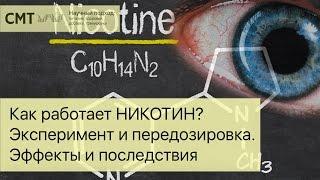 Как работает НИКОТИН? Эксперимент и передозировка. Эффекты и последствия