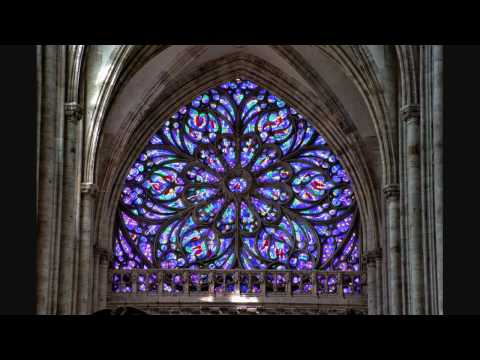 Saint-Saens - Hymne à Victor Hugo - Organ at St Ouen, Rouen - Gerard Brooks
