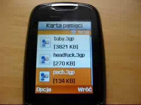 Samsung D600e [Dudli33]