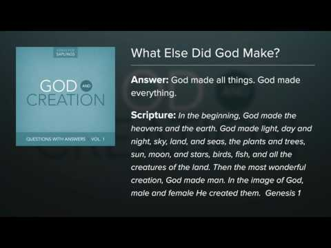 14. What Else Did God Make? - Questions with Answers (Lyric Video) by Dana Dirksen