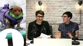 Dog Surf Championships! Dan & Phil's Internet News