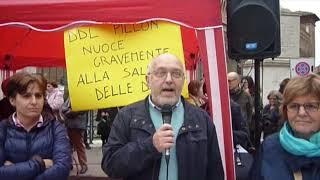 La manifestazione a Ferrara contro il ddl Pillon