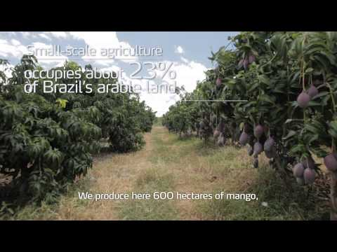 Agriculture in Brazil: Vast resources