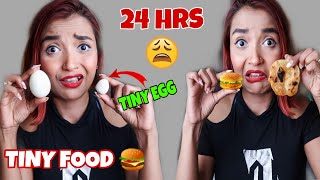 I Ate TINY FOOD For 24 HOUR CHALLENGE  - Chicken GALOUTI KABAB Recipe - MINI Food Challenge INDIA