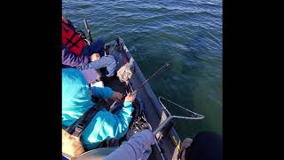 San Luis Boat Trip