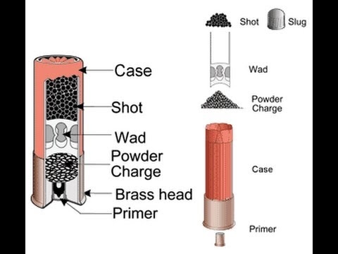 shotgun 101 ammunition youtube rh youtube com Anatomy of a Shotgun Shell Shotgun Shell Colors