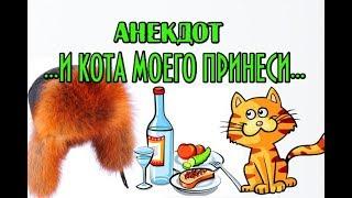 АНЕКДОТ ПРО КОТА