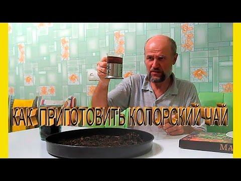 Полезные свойства иван-чая: как приготовить Копорский чай