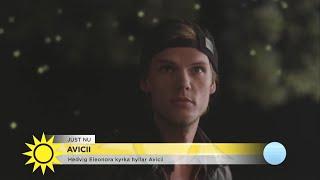 Hedvig Eleonora kyrka i Stockholm ska i kväll tolka Aviciis musik, ...