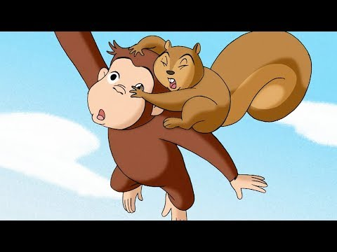 Curious George 🐵George and Jumpy The Squirrel🐵Compilation🐵 HD 🐵 Cartoons For Children