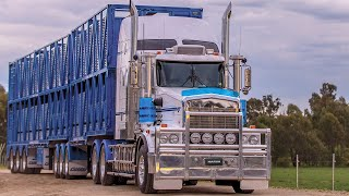 Engineered for Truckers - Ultima 215 LED Driving Lights
