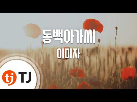 [TJ노래방] 동백아가씨 - 이미자(Lee, Mi-Ja) / TJ Karaoke