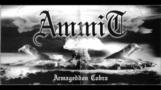 AMMIT- Inside the electric circus (W A S P cover)