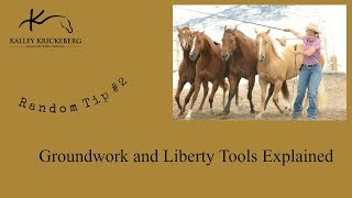 Liberty and Groundwork Horse Training Tools (A couple Tools Homemade)
