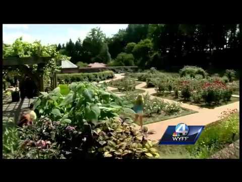 WYFF News 4 anchors explore Biltmore Estate gardens