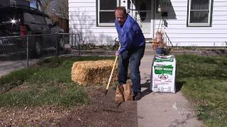 Planting Grass | From the Ground Up