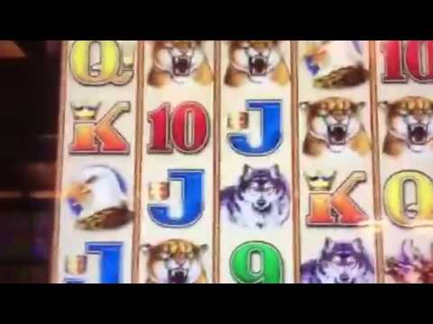 Video Poker Freeplay & Slot Machine Bonus Payday