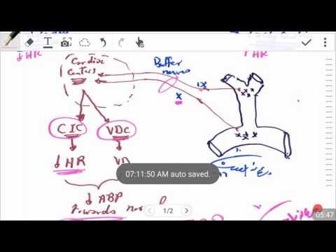 Baroreceptors versus Chemoreceptors (5-2016) by Dr Khaled A Abulfadle