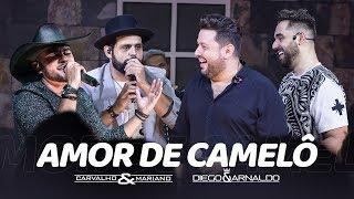 Carvalho e Mariano Feat Diego e Arnaldo - Amor de Camelô thumbnail