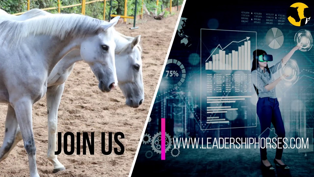 VIRTUAL LEADERSHIP Workshop - Online Training with Horse Power - Experience the new way of Phygital