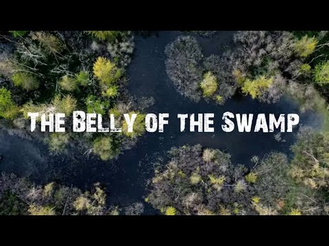 My Dream Duck Hunting Property! Micro Duck Hunting Property Management! The Snake Swamp Series part1