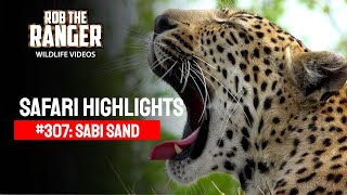 Idube Safari Highlights #307: 16 - 19 November 2014 (Latest Sightings) (4K Video) #youtubeZA