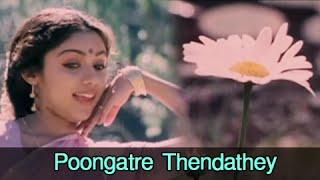 Poongatre Thendathey - Mohan, Ilavarasi - Kunguma Chimizh - Super Hit Romantic Song