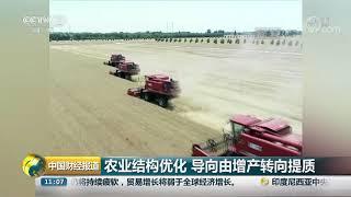 [中国财经报道]70年来全国粮食总产量增长4.8倍| CCTV财经