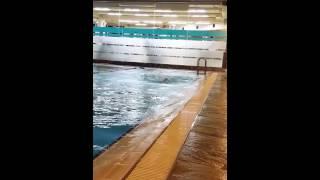 부산 노보텔 수영장