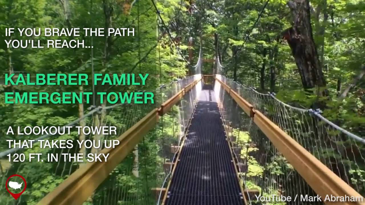 The Murch Canopy Walk At Holden Arboretum In Ohio Is A Must-See & The Murch Canopy Walk At Holden Arboretum In Ohio Is A Must-See ...