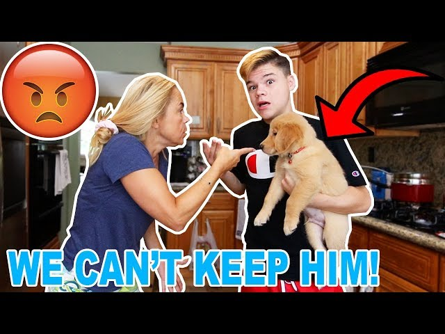 I GOT A PUPPY WITHOUT MY MOM KNOWING! *MAD*