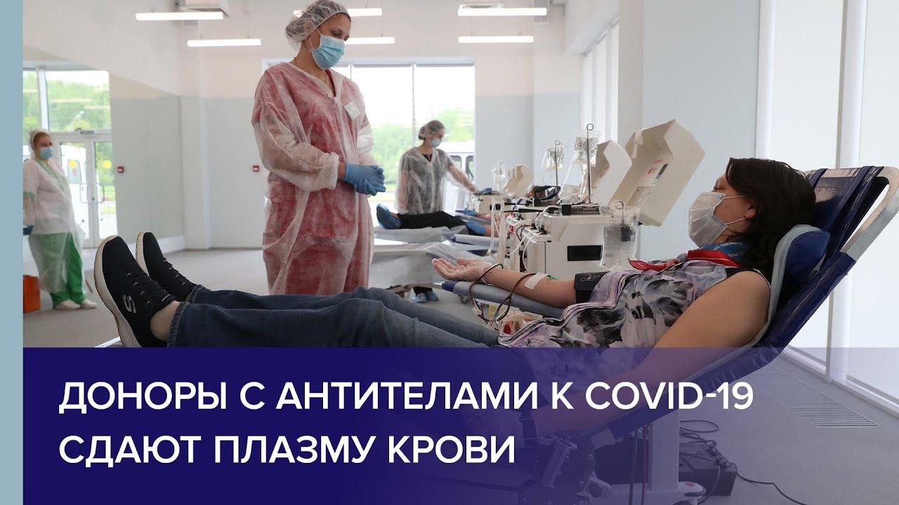 Доноры с антителами к COVID-19 сдают плазму крови