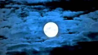 Waterbone - August Moon