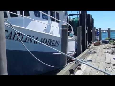 Fishermen Fed Up With Govemment Observer