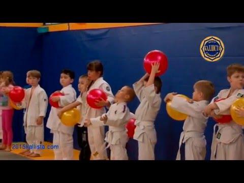 Детский Зеленоград. Игровое детское дзюдо с мячом. 2015kallista.com