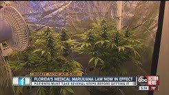 Florida's medical marijuana law now in effect
