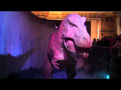 Tyrannosaurus Rex (T-Rex) @ The Natural History Museum (London, England)