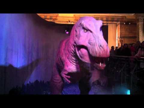 Tyrannosaurus Rex (T-Rex) @ The Natural History Museum (London, England)
