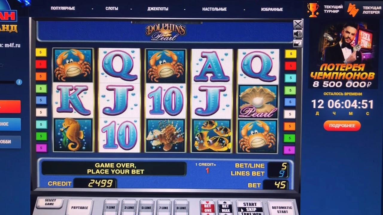 Игровой автомат казино дельфины голден стар питомник кошек