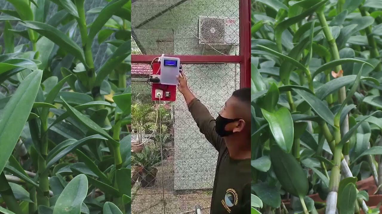 Otomatisasi  Penyiraman  Berbasis  Arduino  Late House Anggrek ATPH SMKN 2 Subang
